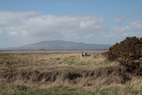 View from Brow well across Solway