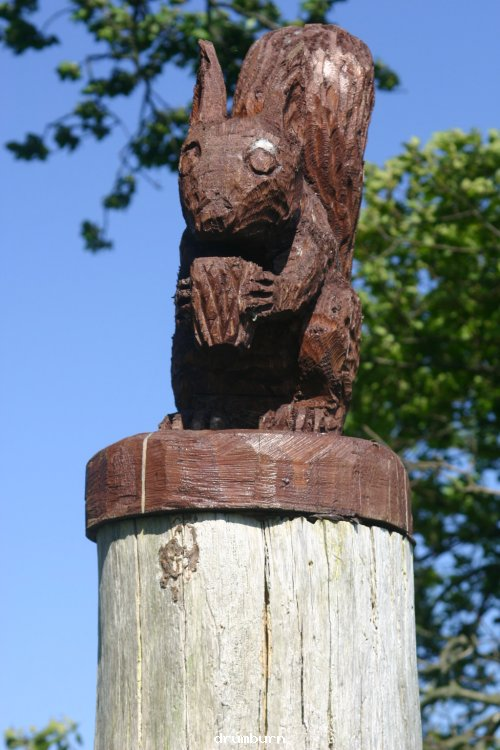 Wood carving at Drumburn view point