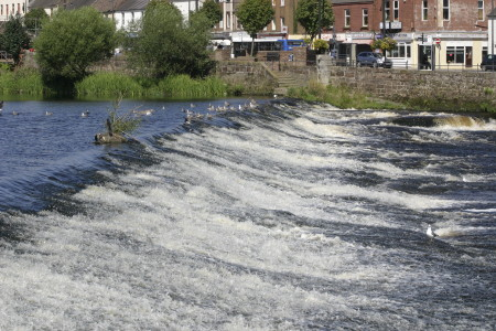 The Caul at Dumfries