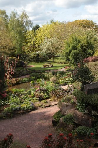 The gardens in The Crighton