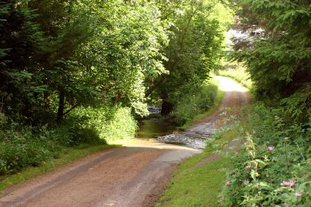 An Access road over a ford at Durisdeer