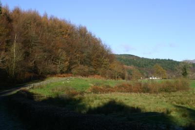 New Galloway Forest
