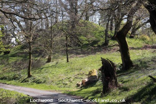 Lochwood plantation  May 2017