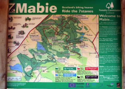 mabie_forest