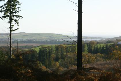 View from Mabie